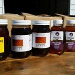 Gold Standard Honey Labeling Through the Years