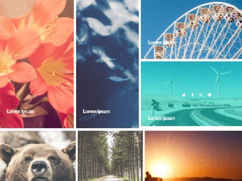 How to Add a Mosaic Gallery to your WordPress Website