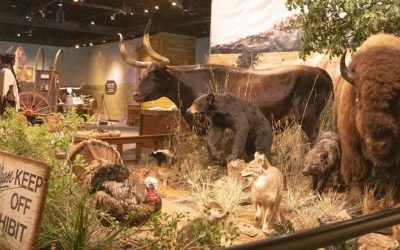 Video: The Chisholm Trail Heritage Experience